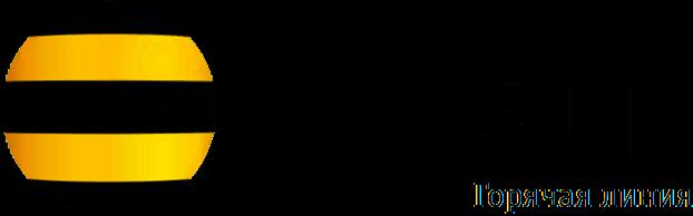 Горячая линия «Билайн» – Бесплатный телефон справочной 8800 с мобильного